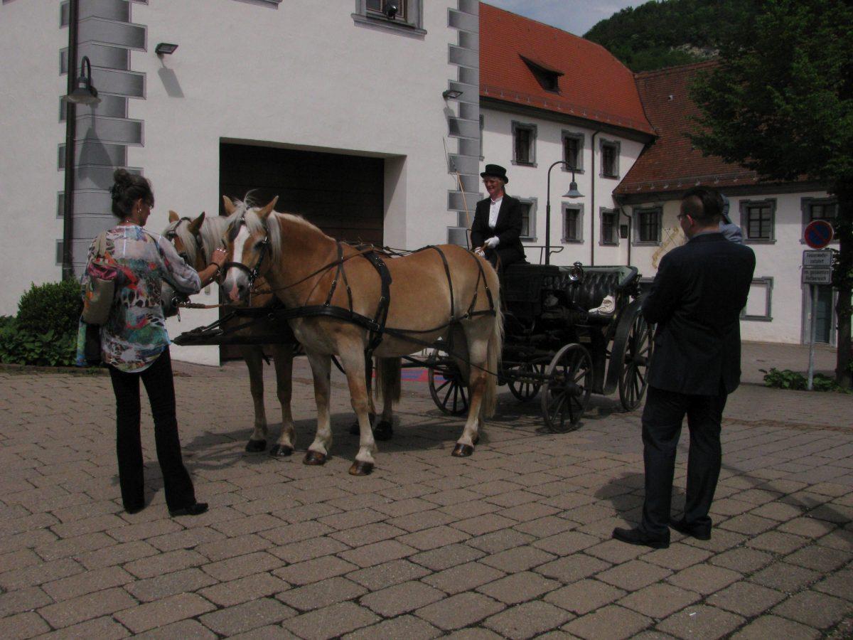 Gespannfahren auf dem Reuschelhof!