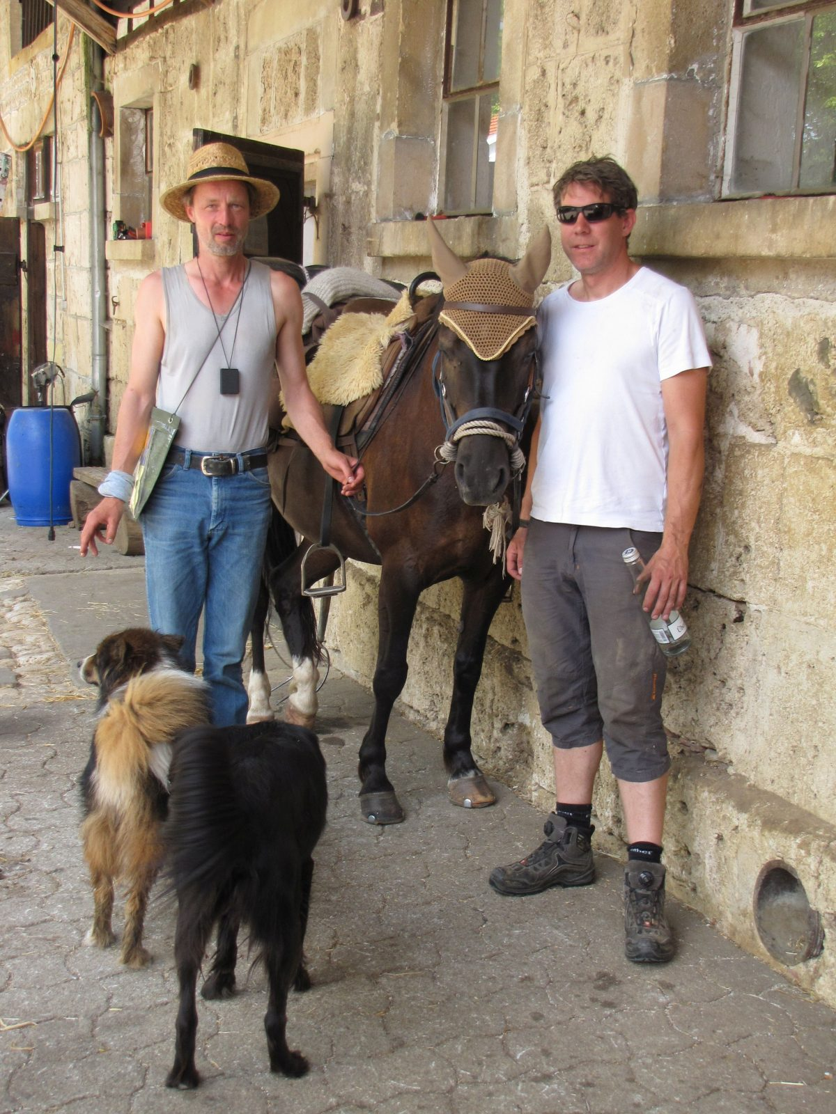 Mit dem Pferd nach Santiago!